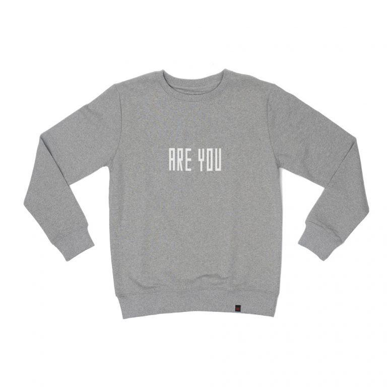 Billebeino Are You Sweater Grey