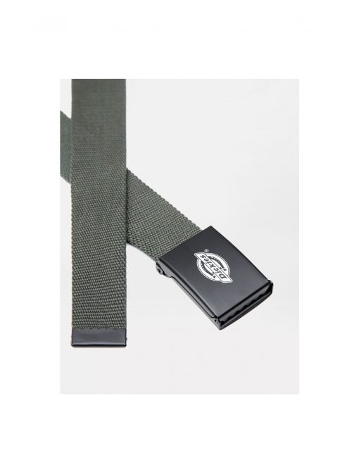Dickies Orcutt Logo Buckle Belt Olive