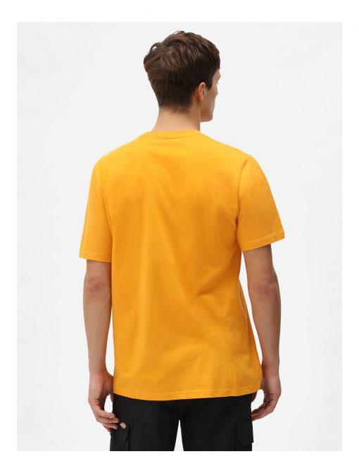 Dickies Mapleton T-shirt Cadnium Yellow